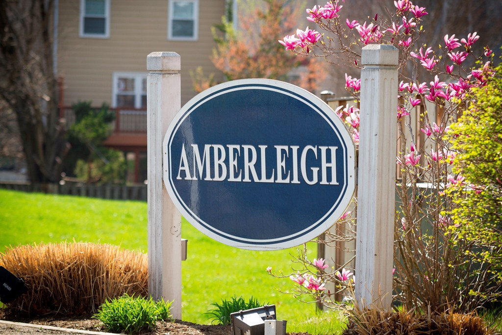 Amberleigh Annual Meeting Agenda 6/7/2018